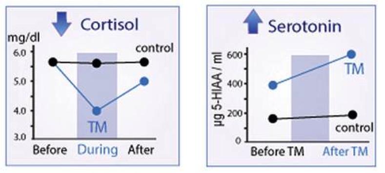 cortisol serotonin